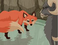 El Zorro y el Chivo / The Fox and the Goat