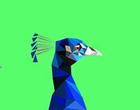 Polygon Peacock