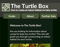 The Turtle Box: An Instructional Website