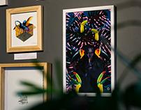El Fichero, Exposición en Alambique 2016-2017