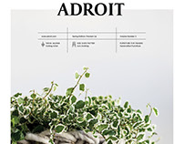 Adroit Magazine
