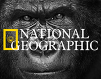 National Geographic Newspaper/CI School project.
