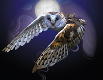 moonlight owl
