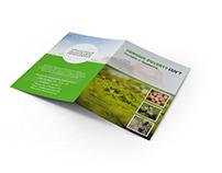 Graphic Design - Bifold Brochure
