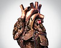 Coração de Pedra - Heart of stone