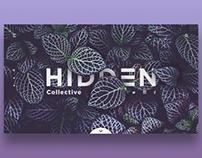 Hidden Collective concept