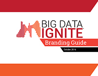 Big Data Ignite Branding Guide (Fall 2016)
