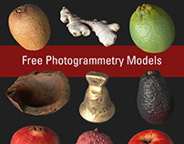Free Photogrammetry (3D Scanned) Models for Download