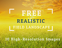 Free  Realistic Field Landscape Backgrounds