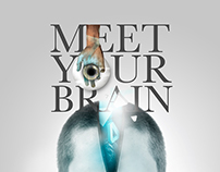 Meet Your Brain