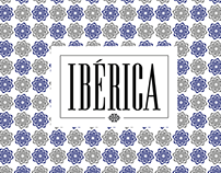 IBÉRICA RESTAURANTS - design 2014-2017