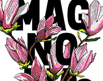 Magnolia lettering & illustration