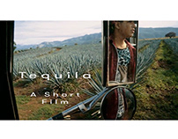 Tequila - From field to bottle
