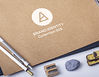 Brand Identity/collection015