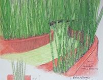 Bamboo R&D 1998-2012