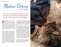 Maine Coon Cat Magazine Layout