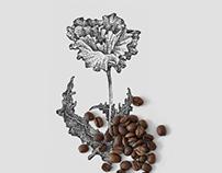 Organic Coffee Shop