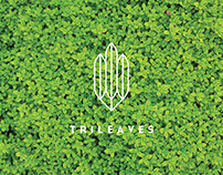 Trileaves