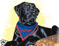 Doggo Drawing - Digital Portrait Commissioned