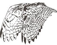 Owls Handkerchief