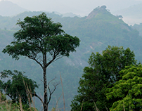 Meenuliyan Para -  Travel and Explore