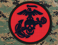 USMC Eagle Skull and Anchor
