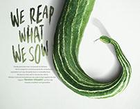 An awareness campaign for pesticide
