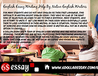 School Collage Students need to write a English Essay