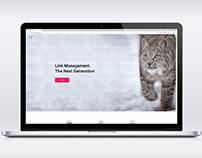 Link Mangement System Landing Page