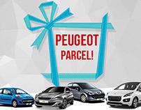 Peugeot Parcel Mailer