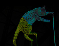 Gato Cósmico