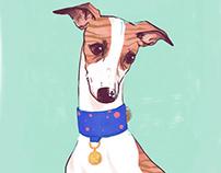 Hey Dog Co Postcards