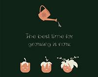 Mistletoe display font 🎊