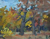 """Autumn"" oils canvas 15x20"