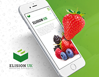 ElisionUK | Website Redesign