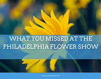 What You Missed at the Philadelphia Flower Show