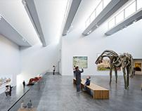 Pictury + Brooks+Scarpa | Mennello Museum