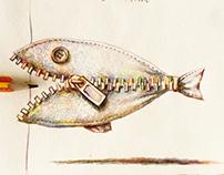 pesce d'aprire