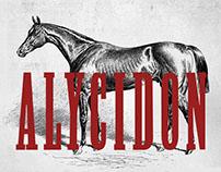 Alicydon Condensed Typeface
