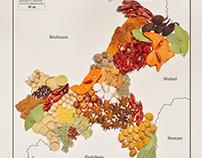 Taste Bud map