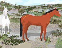 Horses on the Chaparral