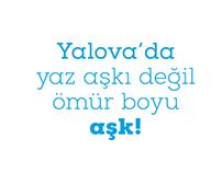 Royal Blue Yalova