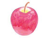 illustration for fruits catalog