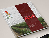 Architectural Project Brochure