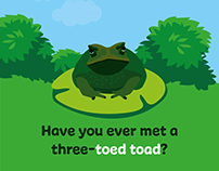 Introducing Homophones: Have you met a three-toed toad?