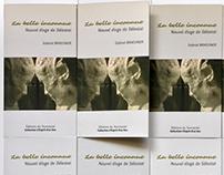 Livre - La belle inconnue : nouvel éloge de Sélestat