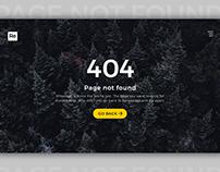 404 Not Found - Website Concept