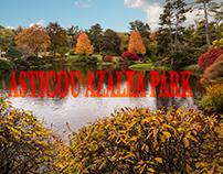 Asticou Azalea Park
