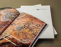 Metalloinvest's annual report 2013