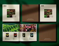 TEA AND COFFEE | catalogue deisgn